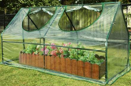 Mini cloche cold frame/greenhouse
