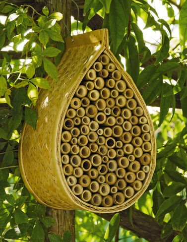 Decorative Bee Nesting Box