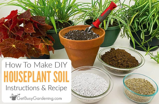 How To Make Potting Soil For Indoor Plants Get Busy Gardening