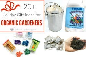Holiday Gifts For Organic Gardeners: The Ultimate Organic Gardening Gift Guide
