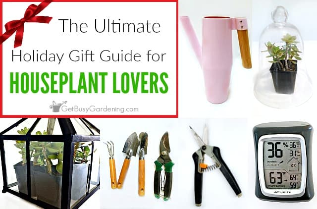 Charmant Indoor Gardening Gift Ideas: The Ultimate Houseplant Lover Holiday Gift  Guide
