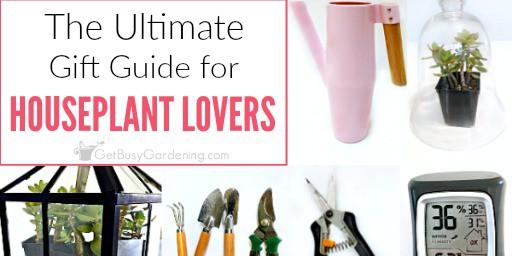 Indoor gardening gift ideas get busy gardening for Indoor garden design twitter
