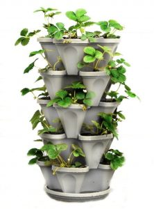 5 Tier Vertical Garden