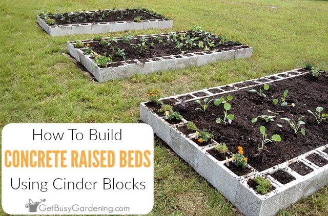 How To Make A Raised Garden Bed Using Concrete Blocks Get Busy