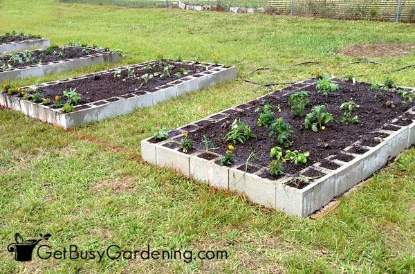 How To Make A Raised Garden Bed Using Concrete Blocks - Get ... Raised Garden Bed Designs on xeriscaping designs, best small vegetable garden designs, rock garden designs, knot garden designs, raised bed shade gardens, shade garden designs, small perennial garden designs, raised planting beds, trellis designs, water garden designs, garden fence designs, simple landscape designs, garden enclosure designs, berry garden designs, raised beds for gardens, garden box designs, green wall designs, small raised garden designs, raised gardens for handicapped, wheelchair garden bed designs,