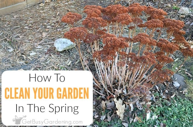 Spring Garden Clean Up Checklist & Cleaning Tips
