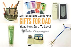 25+ Excellent Gardening Gifts For Dad