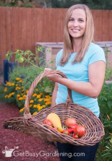 Amy Andrychowicz harvesting vegetables from her zone 4b vegetable garden in Minnesota.