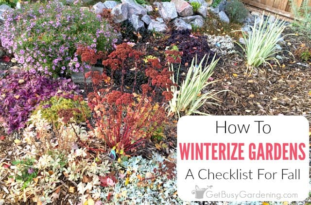 How To Winterize Your Garden In The Fall