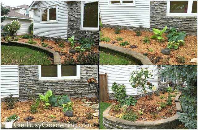 After pictures of my new foundation flower beds