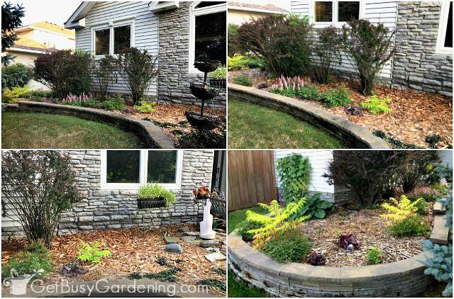 How To Design A Front Yard Foundation Planting - Get Busy ... Ideas For Front Of House Flower Plant on ideas to put around your pool, ideas with privacy bushes, ideas for landscaping in front of house, ideas for front of house landscaping with pavers, ideas for yard landscape with trees, ideas for indian republic day, ideas for interior plants, ideas for front of house garden, fake trees decorate room in house plant, ideas for office plant, philodendron house plant, front door potted plant, front yard decor plant, modern house interior indoor plant, ideas for front of lawn, ideas for making flower beds, ideas for garden paths walkways, ideas for landscaping close to house, master bedroom decorating ideas for plant,