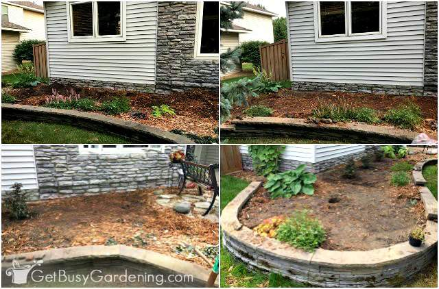 How To Design A Front Yard Foundation Planting - Get Busy ... House Foundation Planting on house foundation painting, house courtyards, house plants, house foundation construction, house foundation shrubs for landscape, house foundation excavation, house foundation soil, house foundation edging, house foundation art, house foundation materials, house foundation signs, house foundation grass, house foundation pond, house foundation rock, house foundation grading, house foundation drainage, house foundation gardening, house foundation sprinklers, house foundation equipment, house foundation screens,