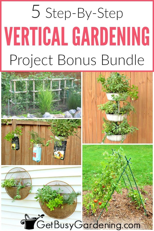 Get inspired and learn how to make these 5 fun and unique space-saving DIY vertical vegetable gardening projects. Great for growing veggies in large backyards, small yards, or even on your patio, balcony, on a fence or wall. Projects include an a-frame trellis, sturdy tomato cages, upcycled fan grates, coffee bags, and a 3-tiered hanging planter! These are great ideas, and super fun ways to grow your own food!