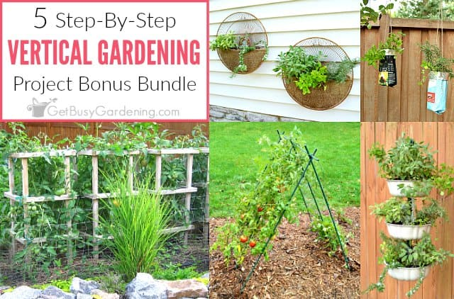 Vertical gardening projects bonus bundle