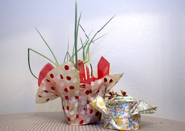Wrapping plants to give as gifts (without covering the plant)