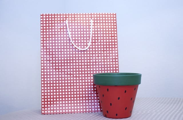 Using decorative gift bags for wrapping plants
