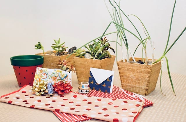 Using colorful materials to create personalized plant gifts