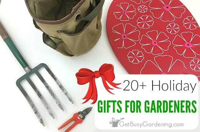 20+ Holiday Gifts For Gardeners
