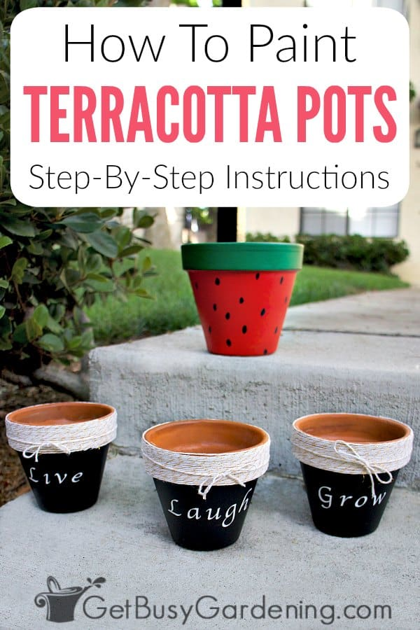 Painting terracotta pots is a fun way to add color to your home, or for for outside on the patio or in your gardens. Hand painted terracotta planters are perfect for growing lots of different types of plants, like succulents or herbs, and there are tons of different DIY design ideas or simple projects you can make with them. Follow these detailed step-by-step instructions to learn how to paint clay pots for outdoor or indoor use.