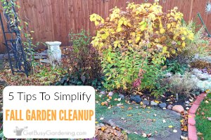 5 Tips To Simplify Fall Garden Cleanup