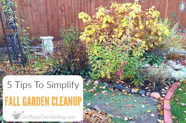 5 Tips To Simplify Fall Garden Cleanup Get Busy Gardening