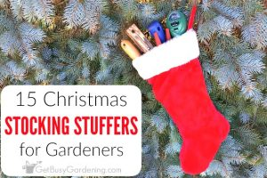 15 Christmas Stocking Stuffers for Gardeners