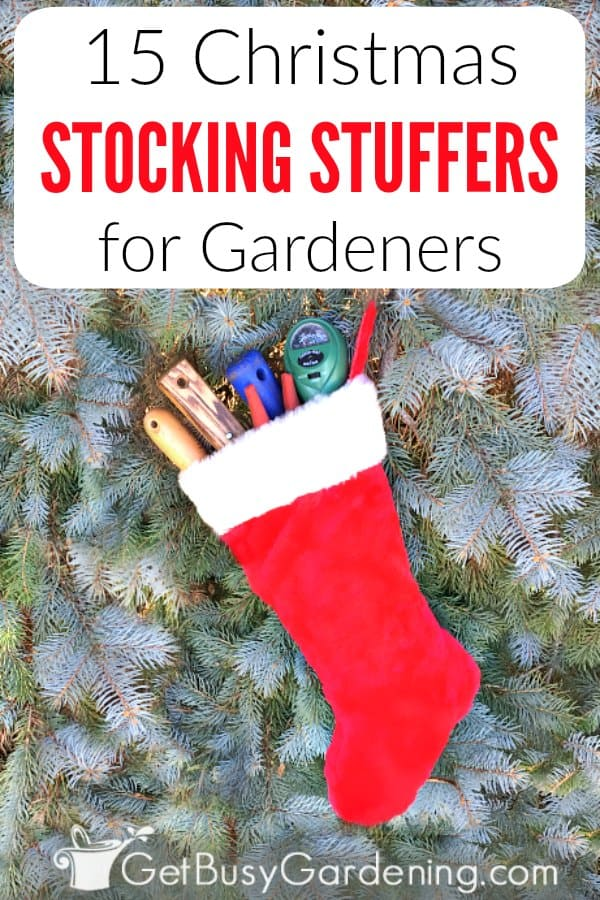 This list of stocking stuffers for gardeners is full of practical and useful gift ideas that any gardener will absolutely love to find in their Christmas stocking. Whether you're looking for small gifts for him or her, for mom, for dad, or for grandma, this list makes it easy to make sure you're getting the best stocking fillers for any green thumb on your list!