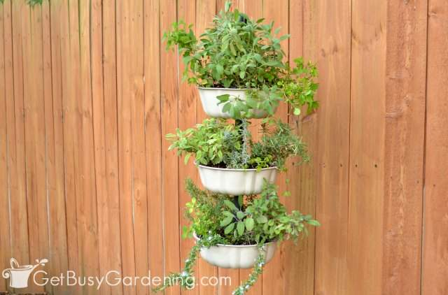 Three-tier vertical hanging planter DIY project