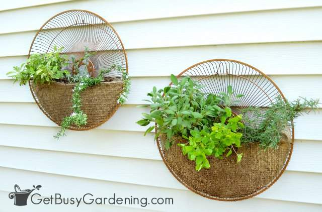 Upcycled fan grill planters DIY project