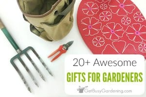 20+ Awesome Gifts For Gardeners