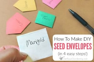 How To Make DIY Seed Envelopes