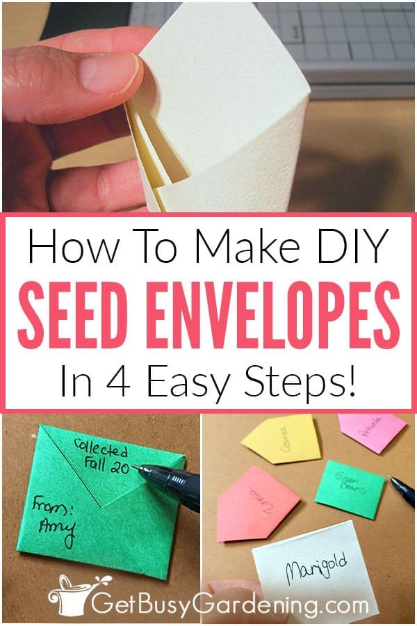 How To Make DIY Seed Envelopes (In 4 Easy Steps)