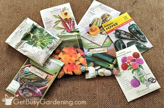 Some of the best seeds to start inside