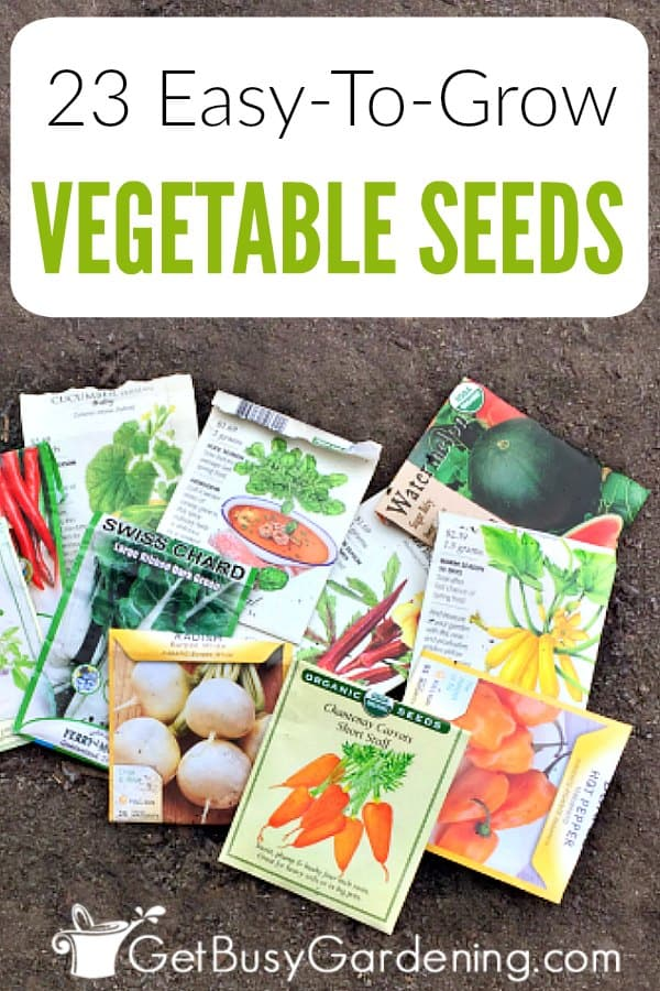 Starting your own vegetable seeds can be hard to get the hang of, especially for new gardeners. Well guess what. Some veggies are actually much harder to start from seeds than others are. So, if you're interested in growing your own food from seed for the first time, then begin with a few easy vegetable seeds to grow, and go from there. Check out my list of the easiest vegetables to grow from seed to help get you started planting seeds indoors or out.