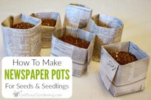How To Make Newspaper Seed Starting Pots