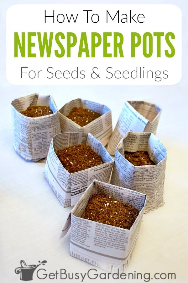 It's fun and easy to make newspaper seed starting pots, and they're great for growing your own seedlings. They are quick and simple to make, and you don't have to be crafty for this DIY recycling project. Learn how to make both round and square origami newspaper planters in this step-by-step tutorial. Plus get tons of tips for using them, including how to water, preventing mold growth, and transplanting without disturbing seedling roots in the spring.