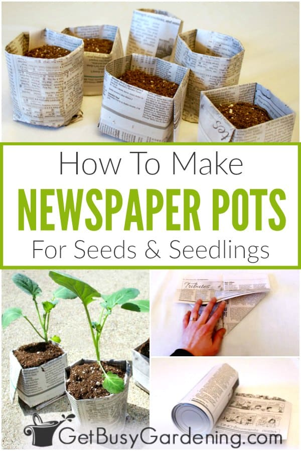 How To Make Newspaper Pots For Seeds & Seedlings