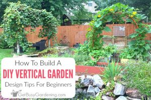 Building A Vertical Garden: DIY Tips For Beginners