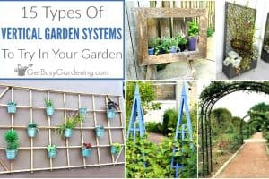 15 Types Of Vertical Gardening Systems & Supports
