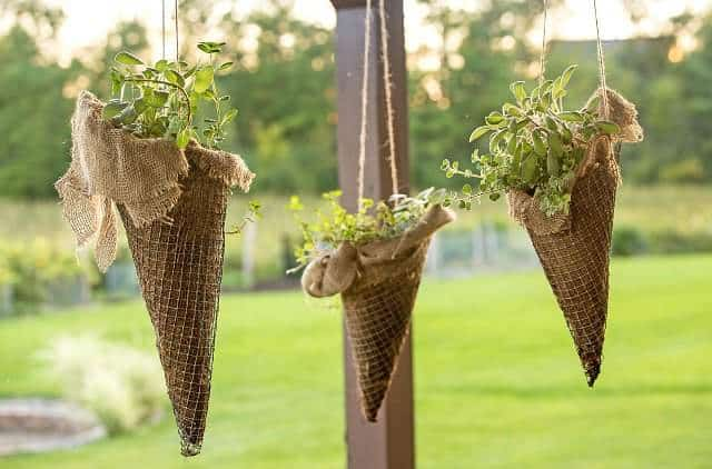 Vertical garden idea #1- Cone planter vertical hanging garden filled with beautiful plants