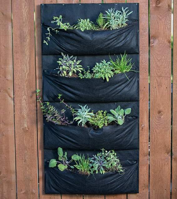 DIY living wall vertical garden planters