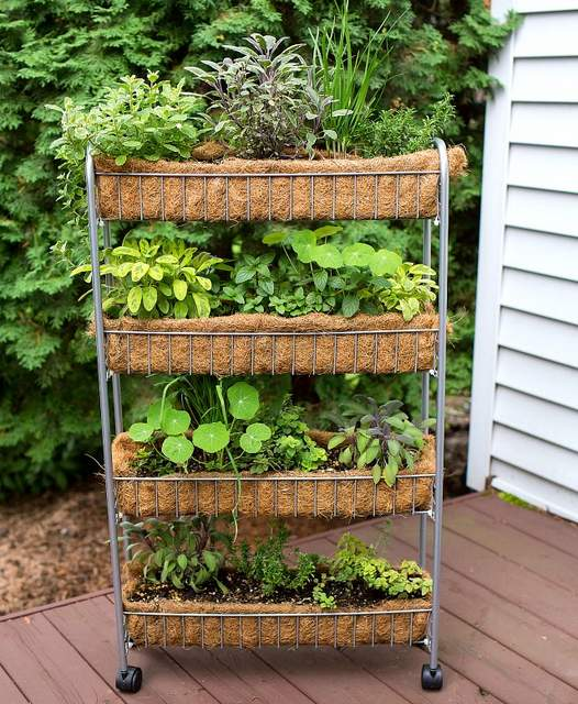 Vertical garden idea #9- Upcycled rack planter vertical herb garden