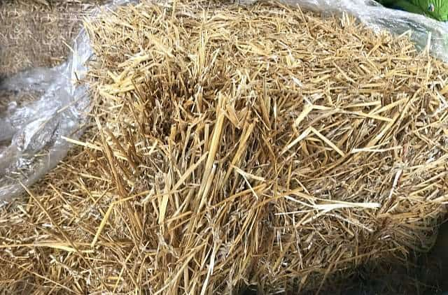 You can use straw or hay mulch for vegetable gardens