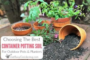 Choosing The Best Potting Soil Mix For Container Gardening