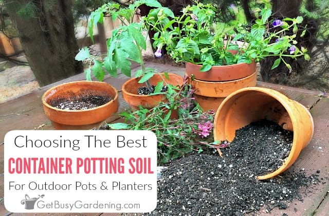 Get Busy Gardening & Choosing The Best Potting Soil Mix For Container Gardening ...