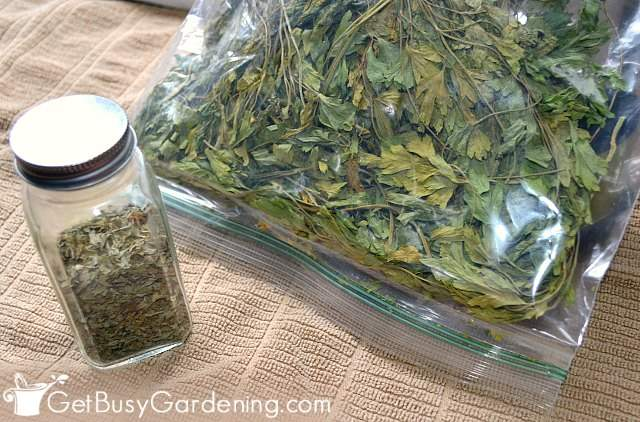 Dried herbs in food storage containers