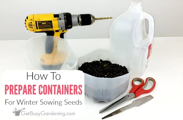 How To Prepare Containers For Winter Sowing