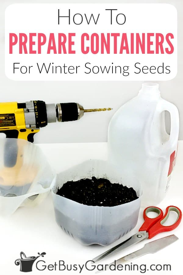 One of the best things about winter sowing is that it takes the bulk of the work out of growing seeds. Instead of fussing with a bunch of equipment, you make mini greenhouses out of recycled plastic containers. But preparing all of those mini greenhouses does take time, and it can be confusing if you've never done it before. Learn exactly how to prepare winter sowing containers with step-by-step instructions. Plus you'll get tips that will help speed things up for you.