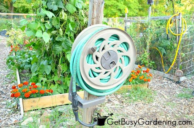 Hose ready to use in the vegetable garden