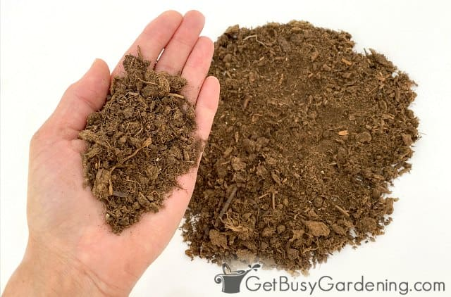 Peat moss potting medium ingredient